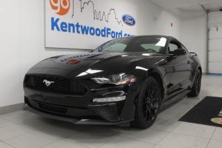 Used 2018 Ford Mustang 3 Mos Deferral! *oac | Automatic coupe in all black for sale in Edmonton, AB