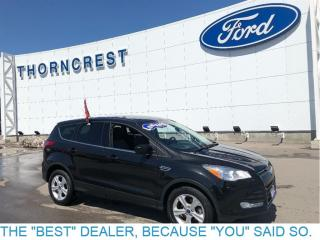 Used 2014 Ford Escape SE-44Kms-$16500 for sale in Etobicoke, ON