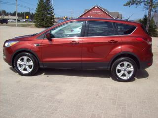 Used 2014 Ford Escape SE for sale in Sundridge, ON