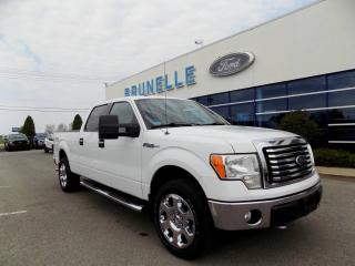 Used 2010 Ford F-150 F-150 XLT XTR for sale in Saint-eustache, QC