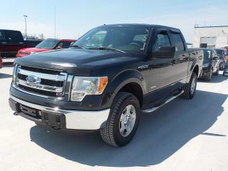 Used 2013 Ford F150 SUPERCREW XLT for sale in Innisfil, ON