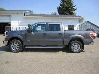 Used 2012 Ford F-150 XLT for sale in Melfort, SK