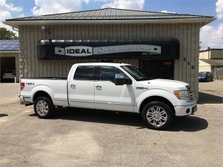 Used 2009 Ford F-150 PLATINUM for sale in Mount Brydges, ON