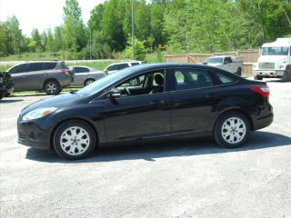 Used 2013 Ford Focus SE for sale in Fenelon Falls, ON
