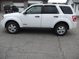 Used 2008 Ford Escape XLT 4WD