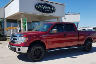 Used 2014 Ford F-150 4X4 / CREW CAB / NO PAYMENTS FOR 6 MONTHS !!! for sale in Tilbury, ON