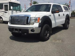 Used 2012 Ford F-150 XLT for sale in Langley, BC
