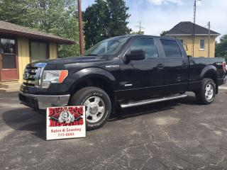 Used 2012 Ford F-150 XLT for sale in Glencoe, ON