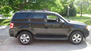 Used 2009 Ford Escape XLT for sale in North York, ON