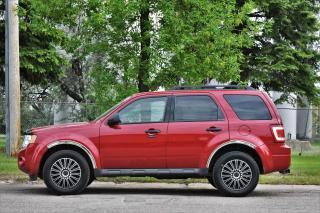 Used 2011 Ford Escape XLT for sale in Estevan, SK