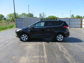 Used 2016 Ford Escape SE FWD for sale in Cayuga, ON
