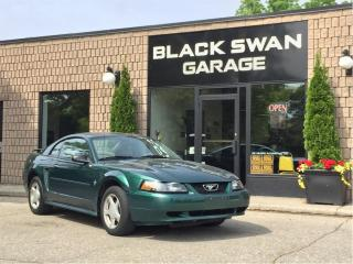Used 2003 Ford Mustang Deluxe with Leather for sale in Paris, ON