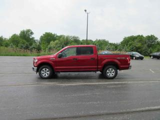 Used 2015 Ford F-150 XLT CREW CAB 4X4 for sale in Cayuga, ON