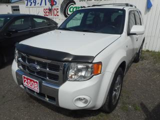 Used 2008 Ford Escape for sale in Brantford, ON