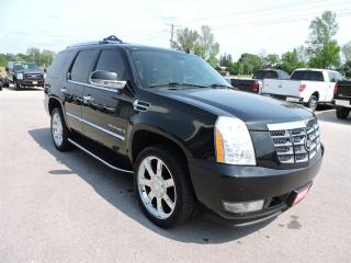 Used 2009 Cadillac Escalade Htd/cooled leather. New tires.  DVD. 7 Pass. for sale in Gorrie, ON