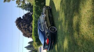 Used 2005 BMW 330Ci M Sport Package for sale in Exeter, ON