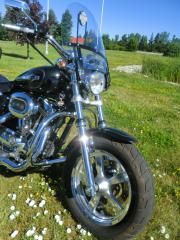 Used 2013 Harley-Davidson Sportster 1200 xXL 1200 CUSTOM for sale in Blenheim, ON