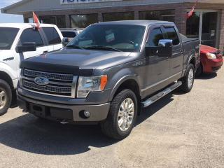 Used 2009 Ford F-150 PLATINUM for sale in Burgessville, ON