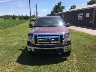 Used 2009 Ford F-150 XLT Super Crew for sale in Burgessville, ON