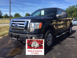 Used 2009 Ford F-150 XLT for sale in Glencoe, ON