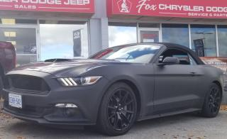 Used 2017 Ford Mustang GT Premium for sale in Owen Sound, ON