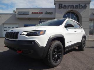 Used 2019 Jeep Cherokee JEEP CHEROKEE TRAILHAWK 2019 ENSEMBLE TE for sale in Napierville, QC