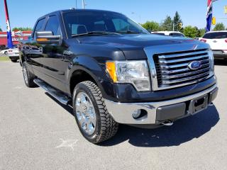 Used 2010 Ford F-150 XLT XTR for sale in Kemptville, ON