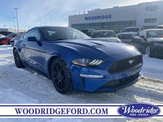 Used 2018 Ford Mustang EcoBoost ***PRICE REDUCED*** 2.3L ECOBOOST, CLOTH SEATS, BACK UP CAMERA, WINTER TIRES INC., NO ACCIDENTS for sale in Calgary, AB