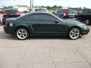 Used 2001 Ford Mustang GT  BULLITT for sale in Fonthill, ON