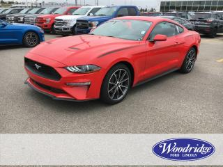 New 2019 Ford Mustang EcoBoost for sale in Calgary, AB