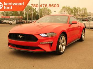 New 2019 Ford Mustang Ecoboost 2.3L 10 Spd Auto, 101a pkg, Decklid Spoiler, 19