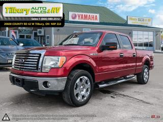 Used 2010 Ford F-150 XLT. RUNNING BOARDS! for sale in Tilbury, ON
