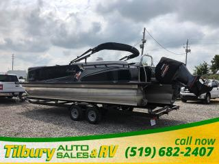 Used 2017 AVALON LSZ QUAD LOUNGER 2485 for sale in Tilbury, ON