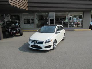 Used 2015 Mercedes-Benz B Class B250 4MATIC WITH SPORT & AMG PACKAGE for sale in Langley, BC