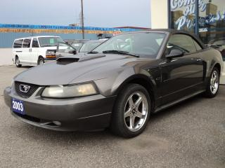 Used 2003 Ford Mustang GT 4.6L Convertible for sale in Brantford, ON
