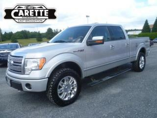 Used 2009 Ford F-150 Platinum 4x4 Cuir for sale in East broughton, QC