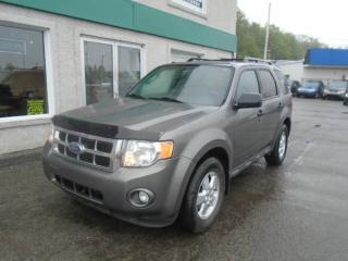 Used 2010 Ford Escape 4 portes, traction avant V6 boîte automa for sale in Saint-jerome, QC