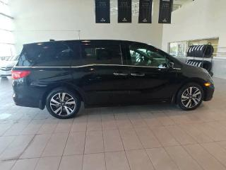 New 2019 Honda Odyssey Touring Back Up Right Side Cam DVD for sale in Red Deer, AB