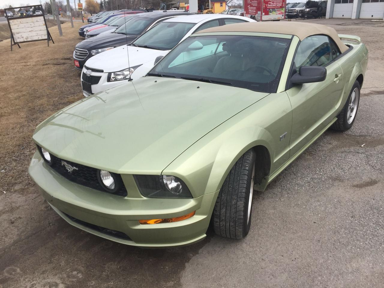 Used 2006 Ford Mustang Gt For Sale In Alliston Ontario