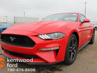 New 2019 Ford Mustang 2.3L Ecoboost, 101a pkg, 10speed Auto Transmission, NAV, Reverse Camera, SYNC, Sport bucket seats for sale in Edmonton, AB