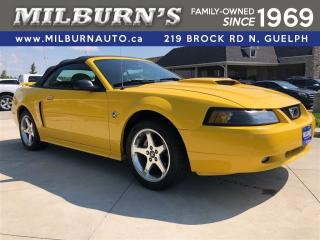 Used 2004 Ford Mustang GT for sale in Guelph, ON