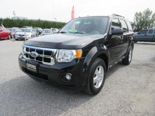 Used 2011 Ford Escape V6 XLT / LOCAL ONTARIO VEHICLE for sale in Newmarket, ON