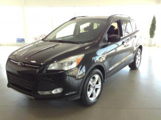 Used 2015 Ford Escape SE for sale in Montréal, QC