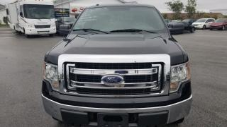 Used 2013 Ford F-150 XLT for sale in Mount Pearl, NL