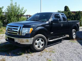 Used 2011 Ford F-150 XLT 4X4 for sale in Gloucester, ON