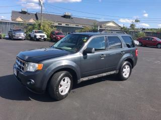 Used 2009 Ford Escape XLT for sale in Fredericton, NB