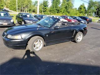 Used 2001 Ford Mustang convertible 5spd safetied for sale in Madoc, ON