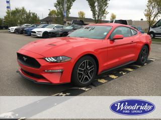 New 2019 Ford Mustang EcoBoost Premium for sale in Calgary, AB