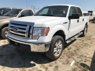 Used 2011 Ford F-150 FX4 for sale in Brunkild, MB