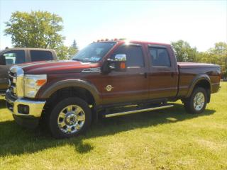 Used 2016 Ford F-250 SD XLT for sale in Omemee, ON